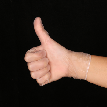 Clear Nitrile Gloves (4)
