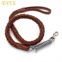 Buy puppy leash,best leash for puppy